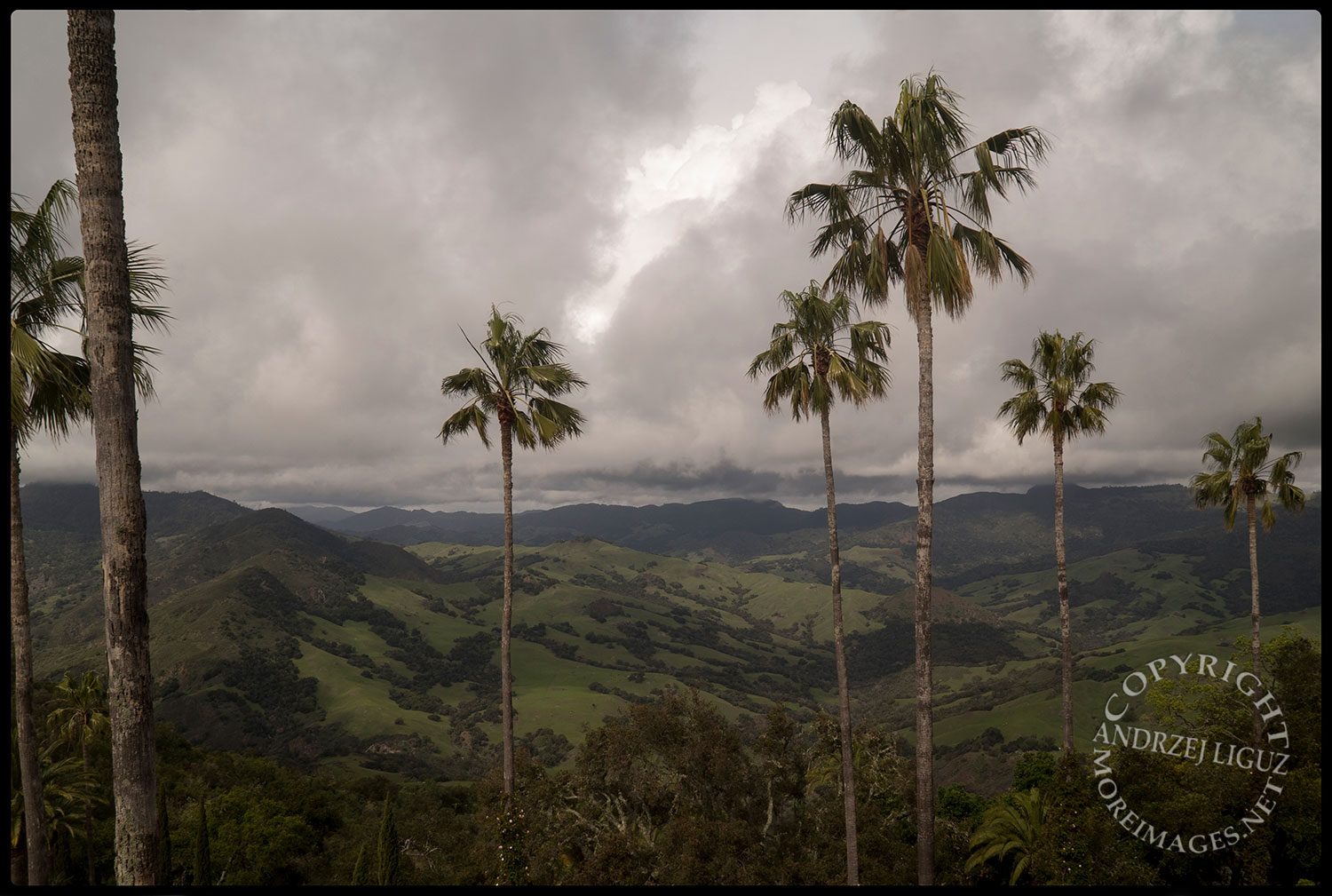 The View from Hearst Castle, San Simeon, CA 2015-03-02
