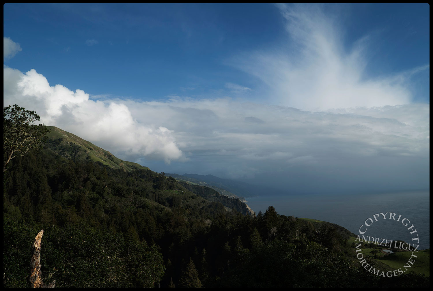 View from Nepenthe Restaurant, Big Sur, CA 2015-03-02