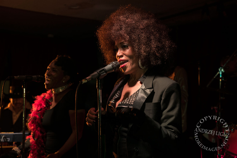 The Brides Of Funkenstein, Zodiac's, Petaluma, CA 2015-03-28