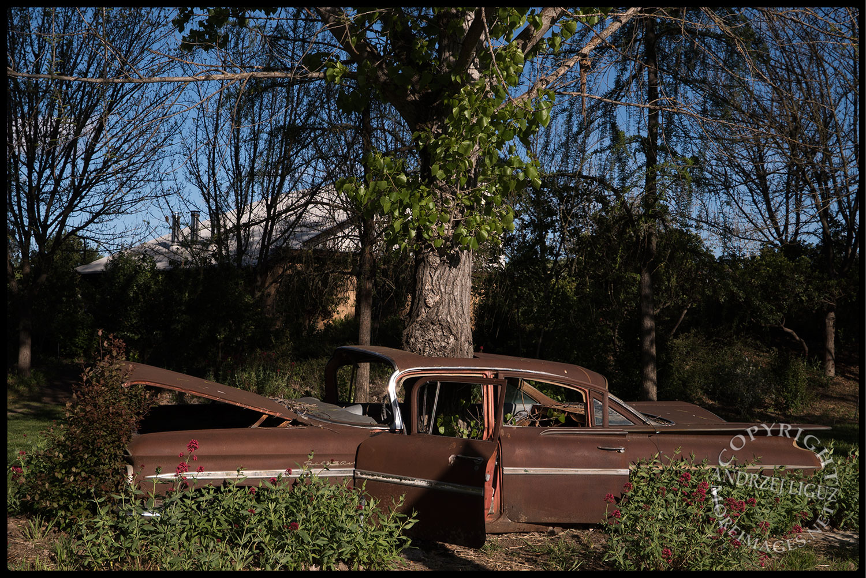 Grow Through Cars, Solar Living Center, Hopland, CA 2015-04-11